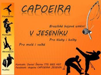 Brazilské bojové umění - Capoieira