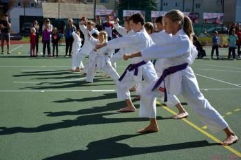 Akce Sport pro Jeseník opět na Gymnáziu